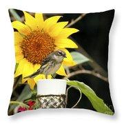 Sunflower And Warbler Bird Throw Pillow