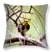 Warbler - Black-throated Green Warbler Throw Pillow