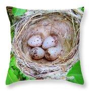 Warbler Nest Throw Pillow