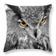Watching You Owl Throw Pillow
