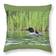 Warm And Cozy Throw Pillow