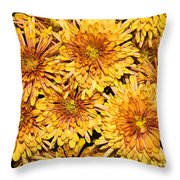 Warm And Sunny Yellows Golds And Oranges Throw Pillow