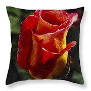Warm Colored Rosebud  Throw Pillow