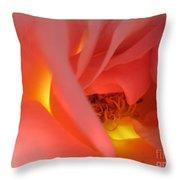 Warm Glow Pink Rose 2 Throw Pillow