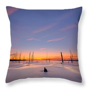 Warm Ice Throw Pillow