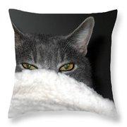 Warm Kitty Throw Pillow