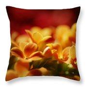 Warm Spring Glow Throw Pillow