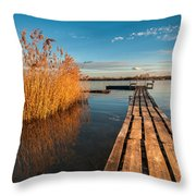 Warm Winter Afternoon Throw Pillow