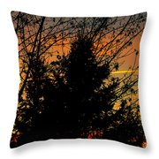 Warmth In My Soul Throw Pillow