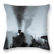 Warmth In The Cold Throw Pillow