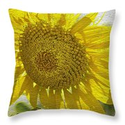 Warmth Upon My Back - Sunflower Throw Pillow