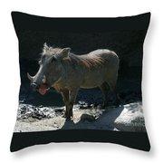 Warthog7119 Throw Pillow