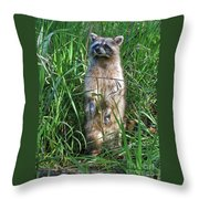 Wary Throw Pillow