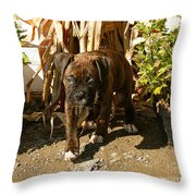 Was I Bad? Throw Pillow