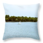 Wascana -22 Throw Pillow