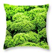 Wascana-45 Throw Pillow