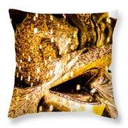 Wascana-53 Throw Pillow