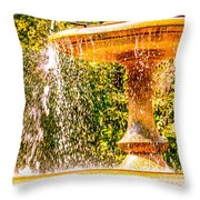 Wascana-55 Throw Pillow
