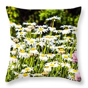Wascana-80 Throw Pillow
