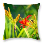 Wascana-82 Throw Pillow