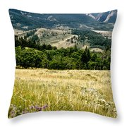 Washake Wilderness Throw Pillow