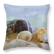Washed Ashore Throw Pillow by Betty LaRue