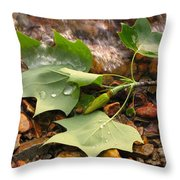Washed Up Leaves Throw Pillow