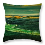 Washington Barn 6 Throw Pillow