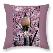 Washington Cherry Blossoms And A Lantern Throw Pillow