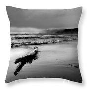 Washington Coast Throw Pillow