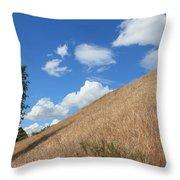 Washington Countryside Throw Pillow