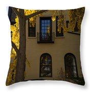 Washington D C Facades - Dupont Circle Neighborhood In Yellow Throw Pillow