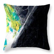 Washington Eagle Two Throw Pillow