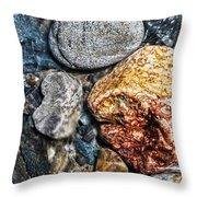 Washington River Rock Throw Pillow
