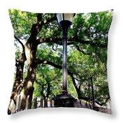 Washington Square Throw Pillow