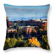 Washington State University In Autumn Throw Pillow by David Patterson