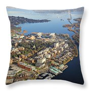 Washington University Throw Pillow