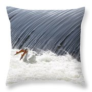 Washington White Pelicans Throw Pillow