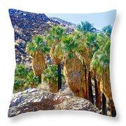 Washingtonian Fan Palm Grove Along Lower Palm Canyon Trail Near Palm Springs-california  Throw Pillow