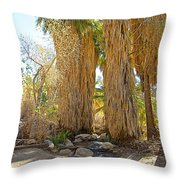 Washingtonian Fan Palms With Large Skirts In Andreas Canyon-ca Throw Pillow
