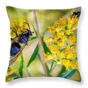 Wasp 2 Throw Pillow