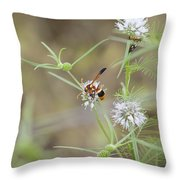 Wasp Variety Throw Pillow