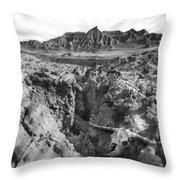 Wasteland Throw Pillow