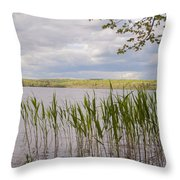 Watchaug Pond Throw Pillow