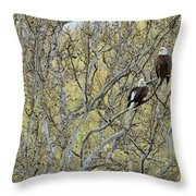Watchful Throw Pillow