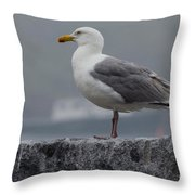 Watchful Seagull Throw Pillow