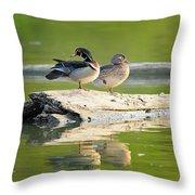 Watchful Woodducks Throw Pillow