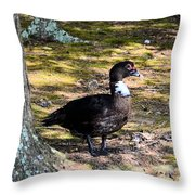 Watching From The Forest Throw Pillow