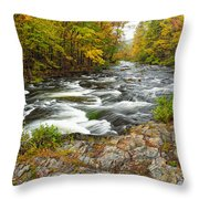 Watching It All Go By  At Beaver's Bend Broken Bow Fall  Foliage Oklahoma Throw Pillow