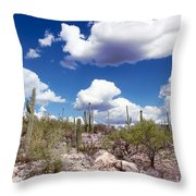 Watching The Clouds Go By Throw Pillow